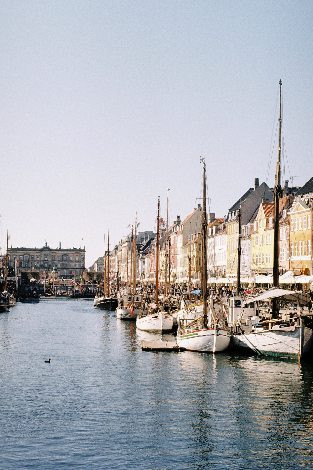Copenhagen New Haven | Film photography | Kodak Gold 200